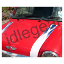 Classic Mini Bonnet Stripes Faded Scottish Flag