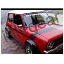 Australian Mini GT Stripes